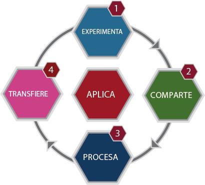 modelo pedagógico de transferencia