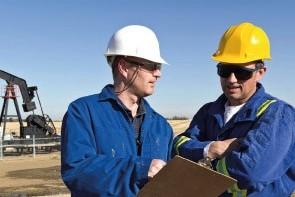 Programa Especializado Online Oil and Gas Industry