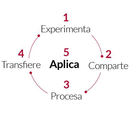 Modelo Pericles de Transferencia: 1 experimenta, 2 comparte, 3 procesa, 4 transfiere y 5 aplica