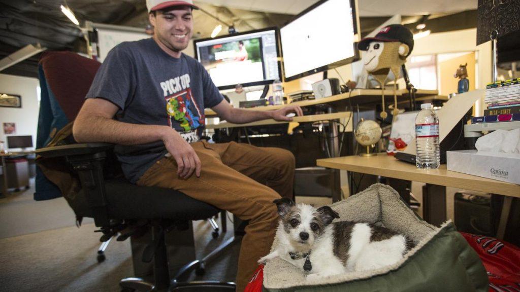 netflix recursos humanos nuevas oficinas perro mascotas animales